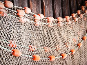 fishing net at an old port in italy
